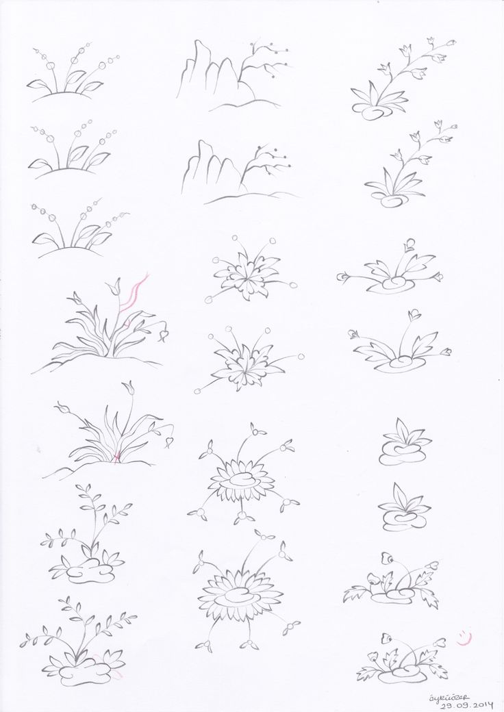 Plants and flowers 3
