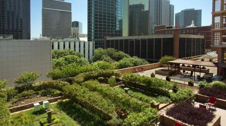 Los edificios que construyan terrazas verdes pagarán menos por el ABL - Infobae
