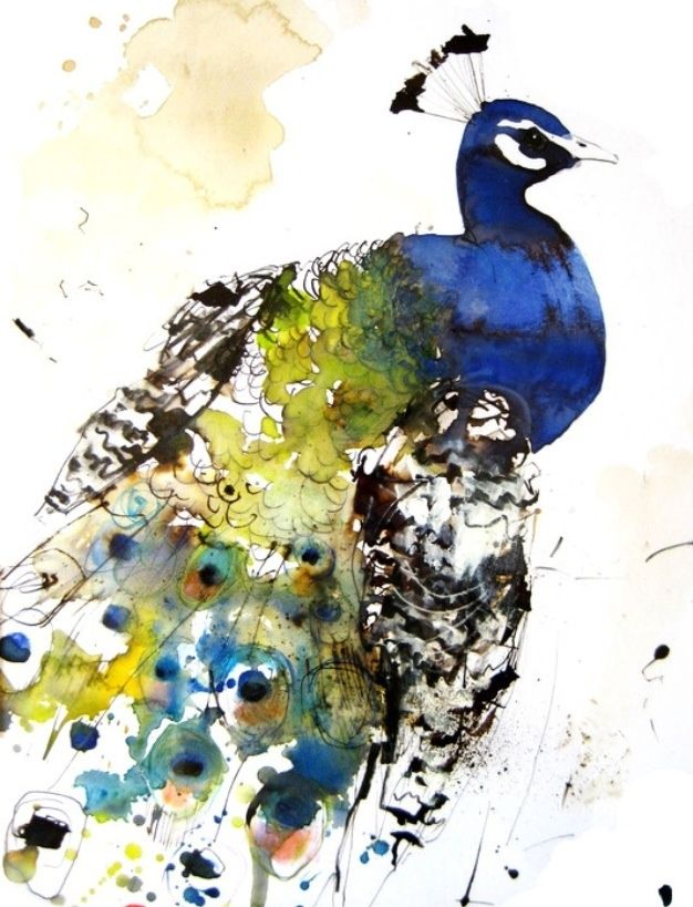 watercolor images of a peacock - Google Search