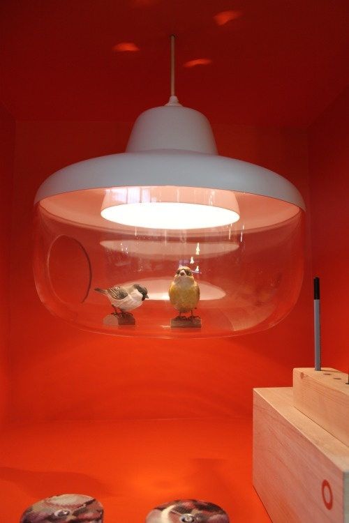 chen karlsson light fixture -- pop anything you like inside to display or cast shadows