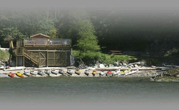 Sunshine Coast Kayak Rentals