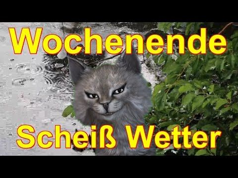 Wochenende, Freitag, Samstag, Sonntag. Scheiß Wetter - Talking Tom Angela FaceRig deutsch - YouTube