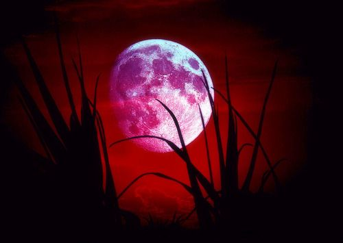 red moon quran - photo #46