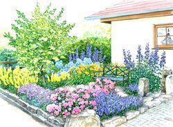 65 besten garten bilder auf pinterest | gartenpflanzen, garten ... - Mein Schoner Garten Vorgarten