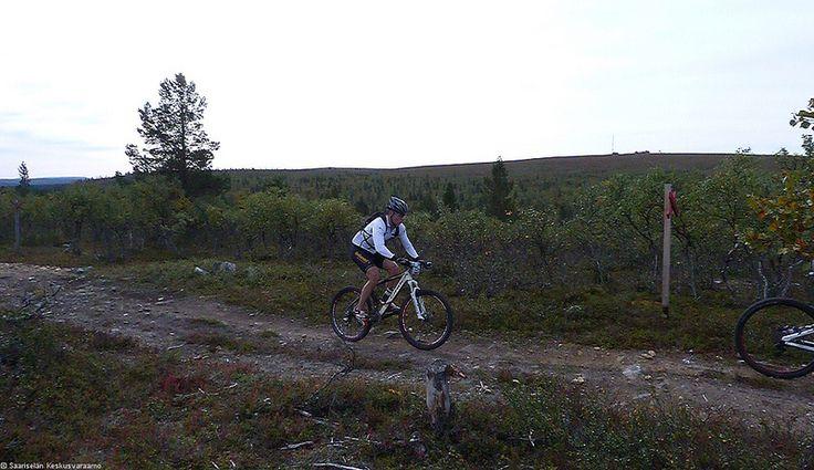 Saariselkä MTB 2013, XCM (32) | Saariselkä.  Mountain Biking Event in Saariselkä, Lapland Finland. www.saariselkamtb.fi #mtb #saariselkamtb #mountainbiking #maastopyoraily #maastopyöräily #saariselkä #saariselka #saariselankeskusvaraamo #saariselkabooking #astueramaahan #stepintothewilderness #lapland