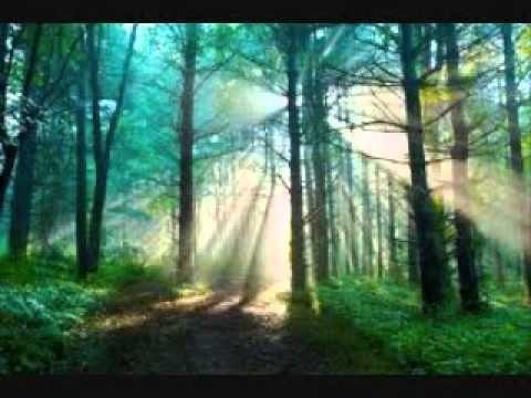Медитация для снятия депрессии и тревоги (изохрон) - YouTube