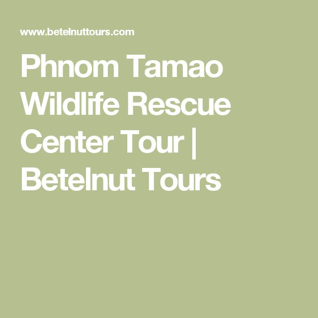 Phnom Tamao Wildlife Rescue Center Tour | Betelnut Tours
