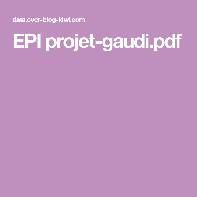 EPI projet-gaudi.pdf