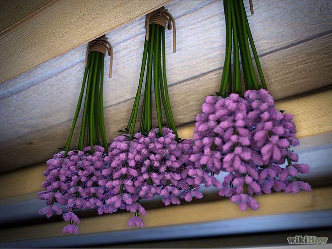 les 25 meilleures id es de la cat gorie faire s cher des fleurs sur pinterest fleurs s ches. Black Bedroom Furniture Sets. Home Design Ideas