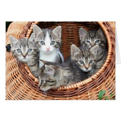 Basket full of fur babies kittens missing you card - baby gifts child new born gift idea diy cyo special unique design