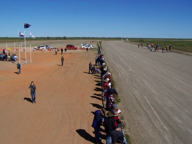 Bedourie Camel Races, #Outback #Queensland