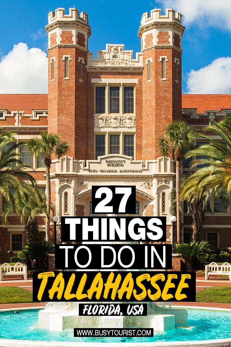27 Fun Things To Do In Tallahassee Florida Tallahassee Florida Florida Florida Travel