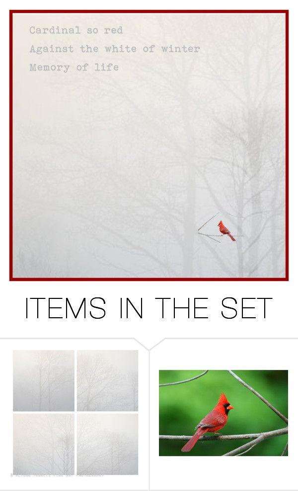 """Winter Cardinals"" by chilirose-creative ❤ liked on Polyvore featuring art, Minimalist, redandwhite, frozen, cardinals and Artspiration"