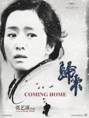 Возвращение домой (2014)