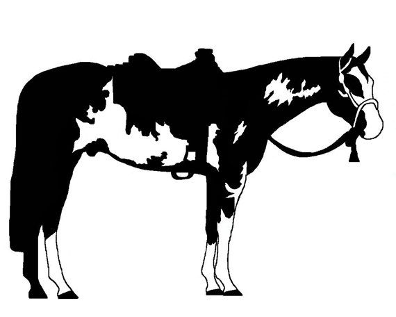 Western Paint Horse Decal Original Designs For Car