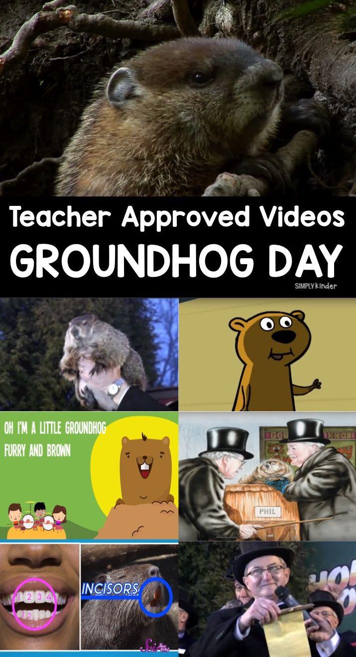 Best 25+ Groundhog Day Ideas On Pinterest