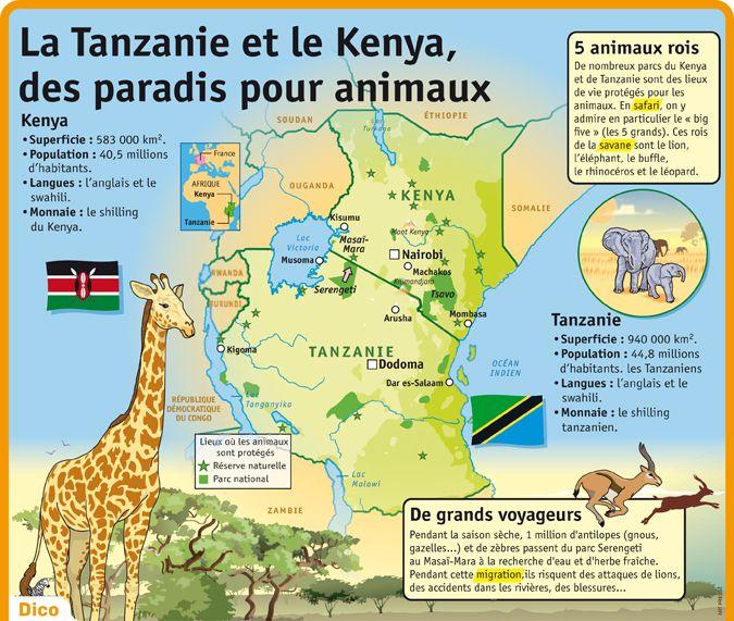 Fiche exposés : La Tanzanie et le Kenya,des paradis pour animaux