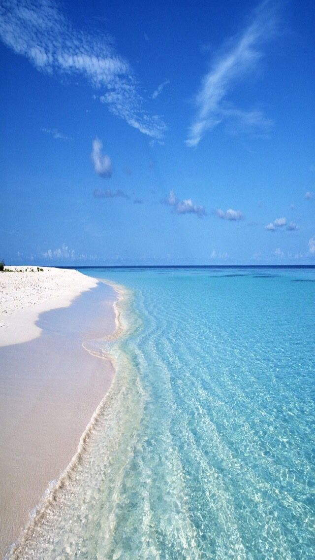 Please let me be here! At least in my mind...