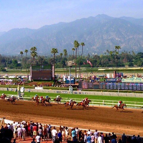 The Santa Anita Park in Arcadia, California is home to fast-paced horse racing and beautiful outdoor vistas. Read more on one of our staff members' experience visiting there at the link in the bio!