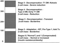 Stages of Insulin Resistance-Normal Blood Sugar is NOT a good indicator