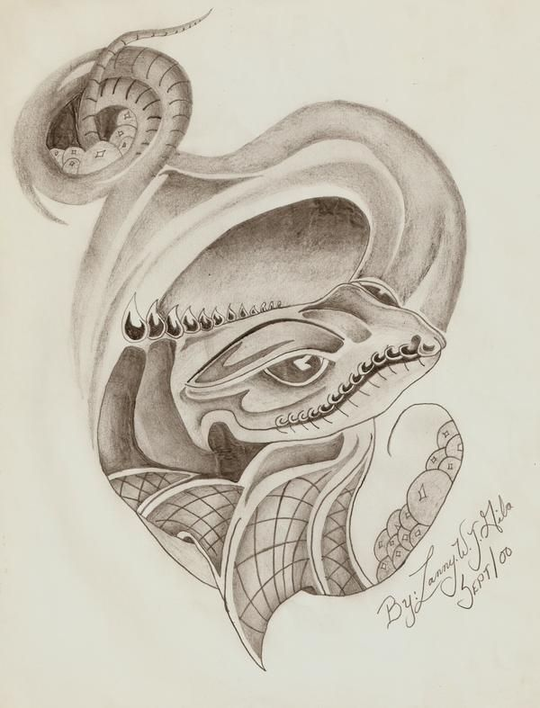 This is something I drew way back long time ago. I love this, It's so cool. :)