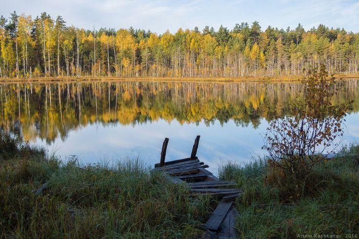 Осень на лесном озере - Красивые осенние фотографии