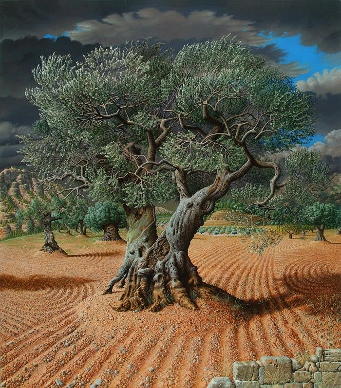 The Olive Tree by Miriam Escofet