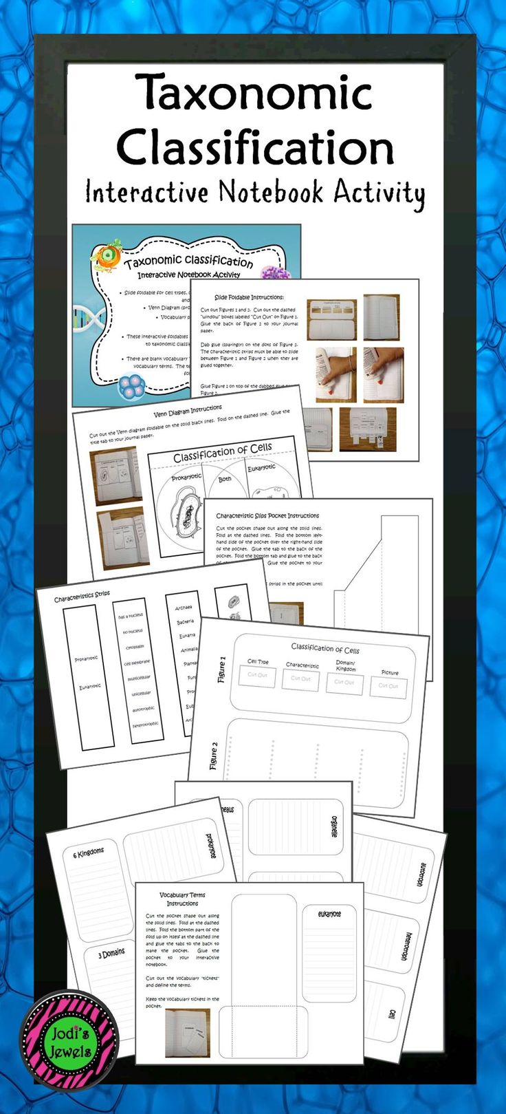 Created for an introduction to taxonomic classification of living things, students will create a slide foldable for cell types, characteristics, domain/kingdom, and images; an interactive Venn for prokaryotic and eukaryotic; and a vocabulary pocket with terms.