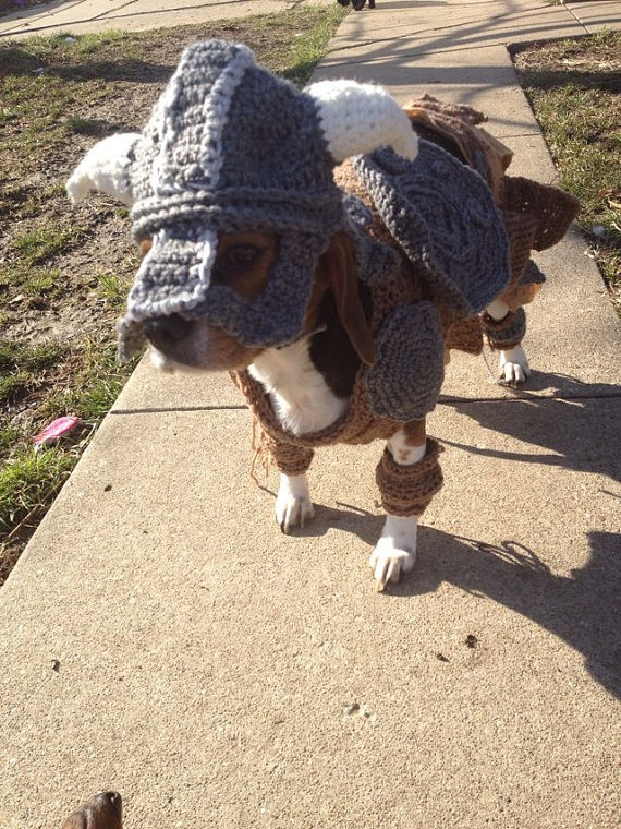 I'm totally doing this to my dog this Halloween.