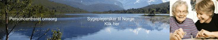 http://detskalsmageafnoget.dk/2012/02/indisk-dhal-med-kalkun-og-raita/