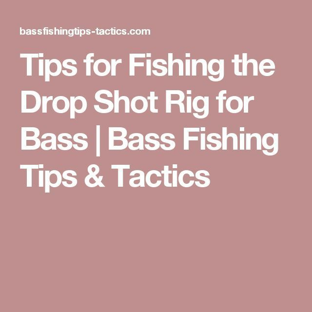 Tips for Fishing the Drop Shot Rig for Bass | Bass Fishing Tips & Tactics