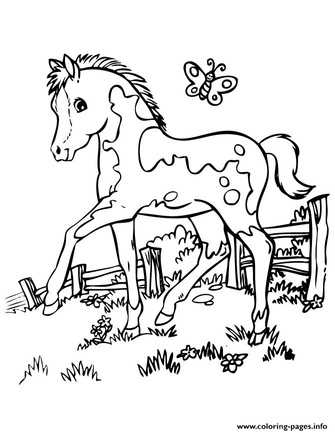 Printable Coloring Pages Horses Free Horse For Kids