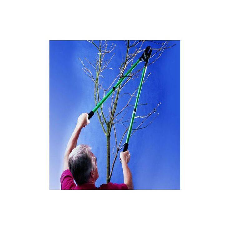 Cuida tu jardín, todos los árboles y plantas para que esten en todo su esplendor... TIJERAS PODAR EXTENSIBLES - Qualimailb http://www.qualimail.es/tijeras-podar-extensibles.html