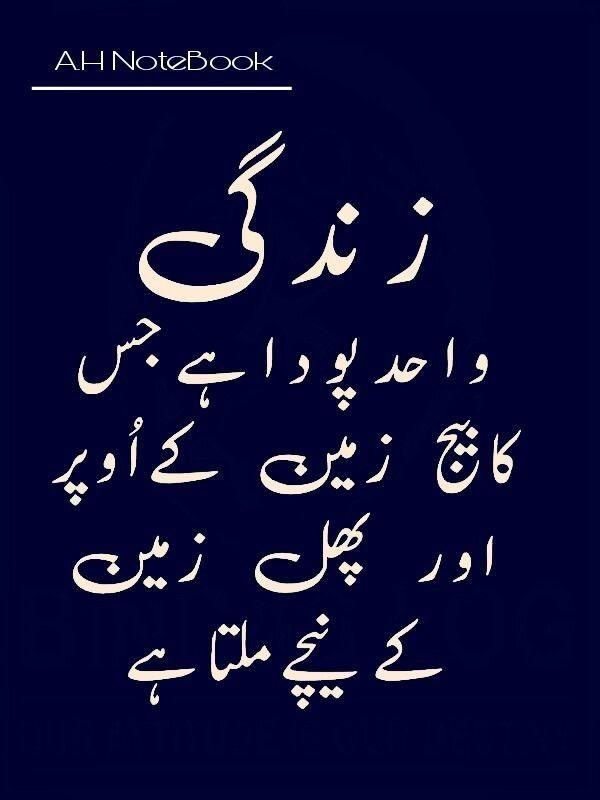 Pin by Aayat on Zindagi | Islamic quotes, Urdu quotes ...