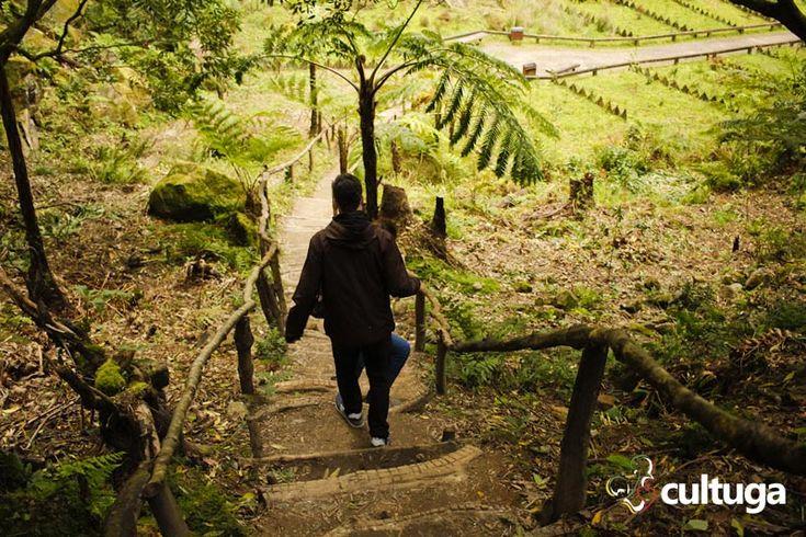 Percurso pedestre na Caldeira Velha, Ilha de São Miguel, Açores.