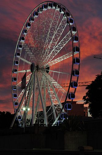 The Eye - Brisbane
