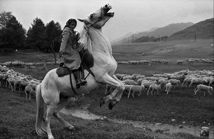 Цыганочка-пастушка на коне. С раннего возраста дети знакомятся с седлом и помогают взрослым пасти стада. Цыгане-скотогоны. Окраина села Онгудай. Сибирь. 30.07.1980.