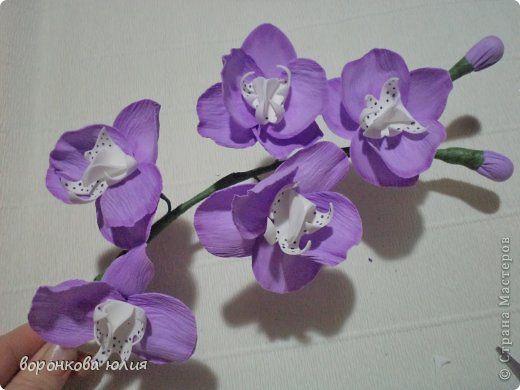 127 best fleurs en papiers images on pinterest | flowers, paper