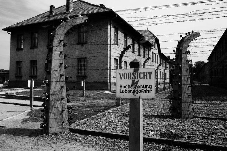 Auschwitz Birkenau » Tours » See Krakow