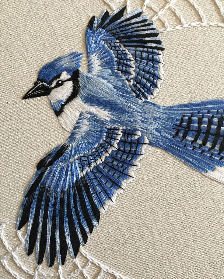 I'm super excited and grateful that my bluejay embroidery will be featured in this year's edition of @windhover_ 🖤 And next Friday April 13th it will be on display at @artspacenc for the Windhover release party, go and support! . . . #embroidery #handembroidery #contemporaryembroidery #embroideryart #hoopart #needlework #modernneedlework #dmcembroidery #dmcthreads #needleworksociety #embroideryinstaguild #paintingwiththread #bluejay #spiderweb #lovelyouthembroidery