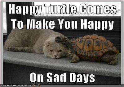 Happy Turtle Makes Me Happy / funny stuff! - Juxtapost