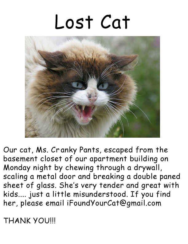 Mizzundahstood. | 22 Hilarious And Disturbing Missing Cat Posters