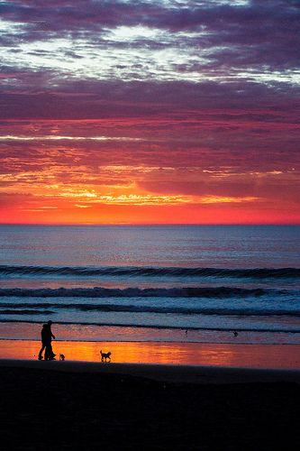 Bonito viernes amigos fotógrafos y diseñadores hoy les mostramos una imagen de las Playas de Tijuana.