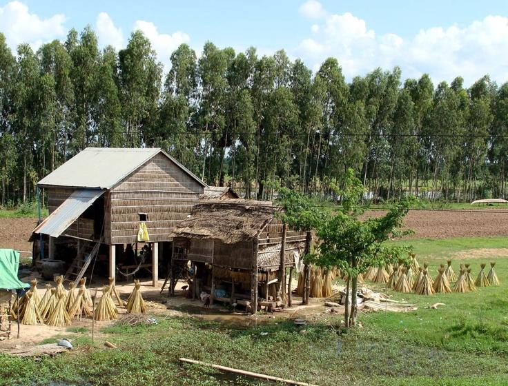 Farms and fields the farm wall pinterest house for Minimalist house thailand