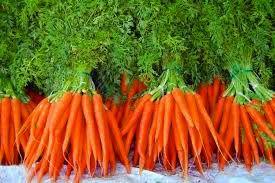 de belles carottes toutes rouges