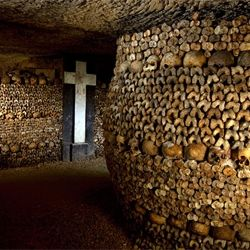 Catacombs of Paris. Imagine this for miles. Every wall artistically draped with skulls and bones.