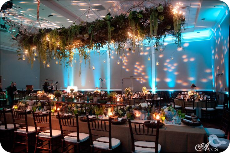 Enchanting Events: Enchanted Forest Event - Google Search