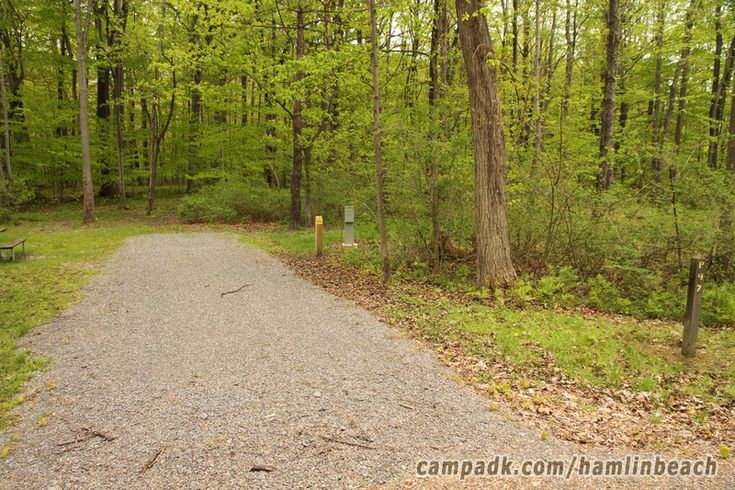 Campsite Photo of Site 47 at Hamlin Beach State Park, New York - Looking at Site…