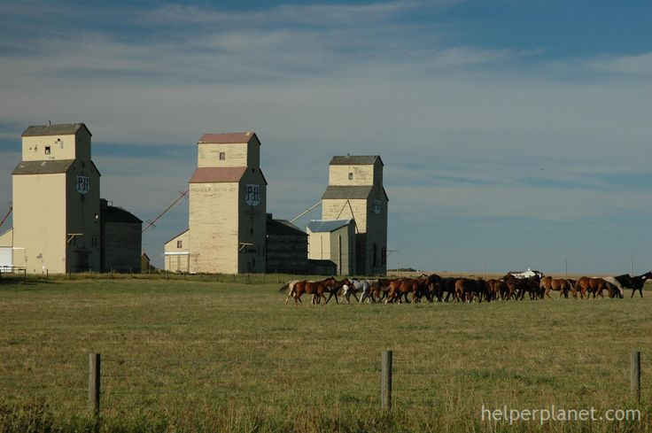 Grain Elevators Alberta Canada