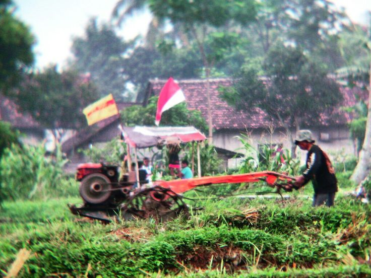 Tractor of Indonesia  #tractor #handtractor #farm #agriculture #pertanian #sawah